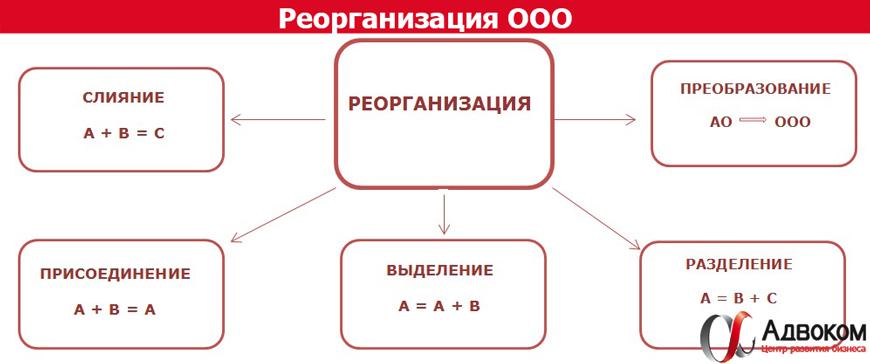 Оао ликвидация и реорганизация